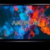 Naviplay N900